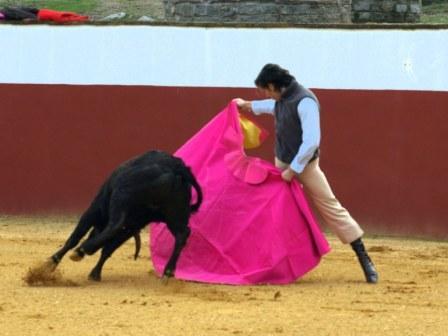 Javier Solís parando con el capote a su primera vaca.