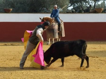 Antonio Muñoz colocando la vaca en el caballo.