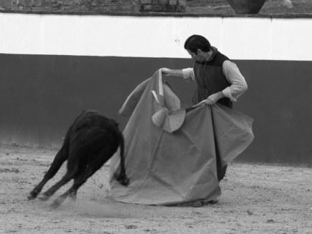 La segunda vaca sigue el dibujo imaginario que le marca el percal de Antonio Muñoz.
