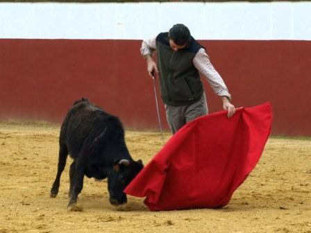 Antonio Muñoz se gusta con este estético remate por bajo donde marca la salida al animal.