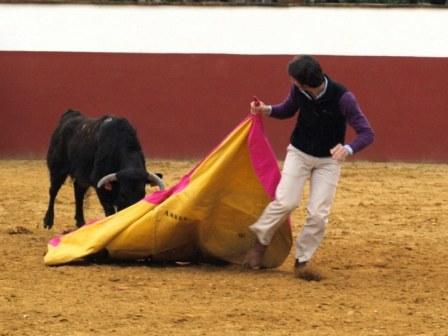 Javier Ambel en esa forma tan característica en él de tirar de las vacas...y de los toros.