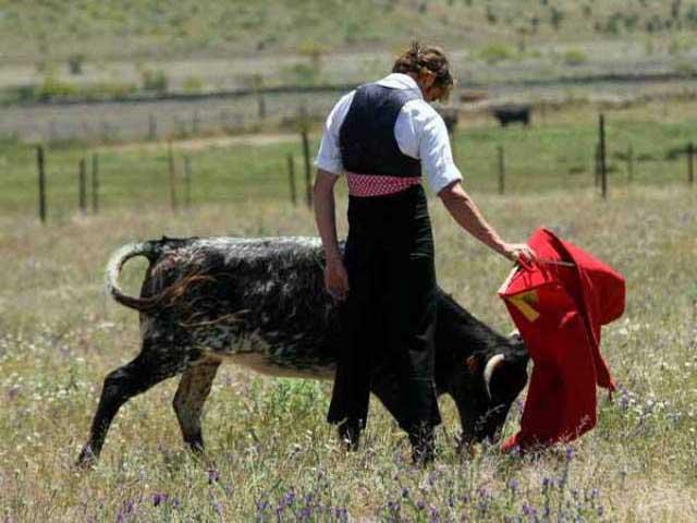 Con una nueva vaca Julio se relajó toreando a gusto.