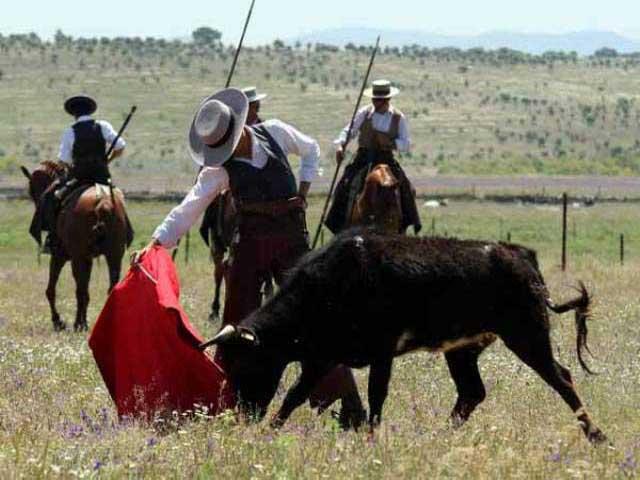 Estampa de bravura. Hombre, caballo y toro.