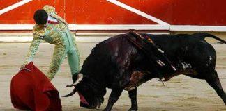 Talavante en Pamplona. (FOTO: Manolo Moreno/Burladero.com)