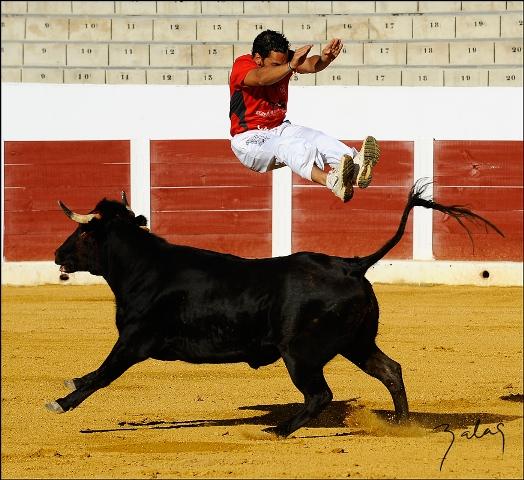 'El Niño de Badajoz', saltando por encima del novillo.