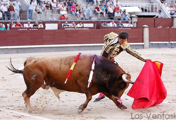 Para ganarle la partida al natural.(FOTO:Juan Pelegrín/Las-Ventas.com)