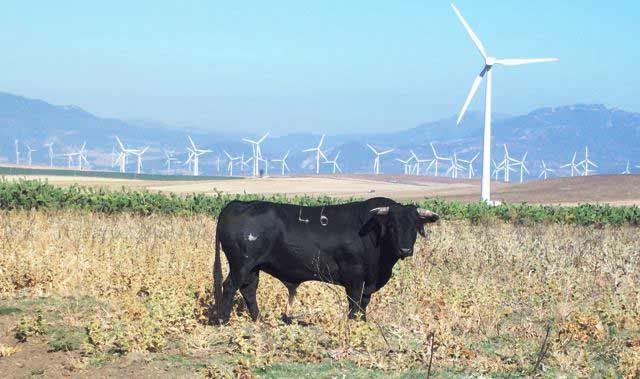 Tapatana, en donde se conjugan los molinos de viento y el toro bravo.