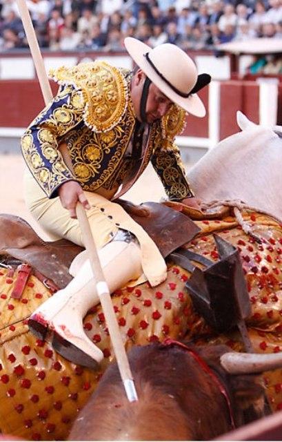 Tulio Salguero picando en Las Ventas. (FOTO: Las-Ventas.com)
