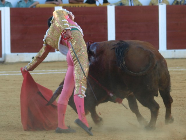 La cintura elástica, el cuerpo se alarga tanto que se detiene en el tiempo, la muleta no miente... el torero torea y enamora...