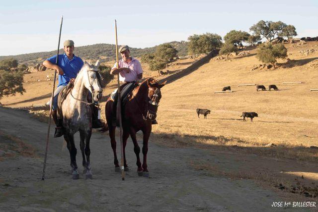 Ganadero y mayoral encaminándose a la manada.