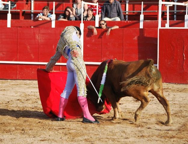 El eral de Píriz no dejó nunca de querer coger la muleta. (FOTO:Fco. Javier Campos)