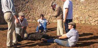 Herrando a mano en la ganadería de Arcadio Albarrán. (FOTO: J.M. Ballester)