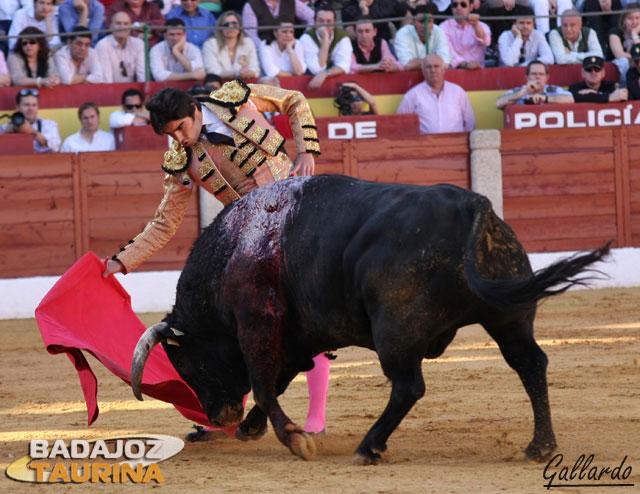 Intentando encelar el toro en la muleta a base de taparlo mucho.