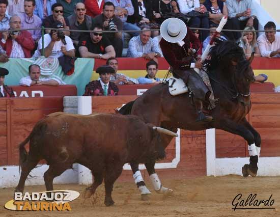 'Nazarí' cosiendo al toro a su estribo para llevarlo toreado.