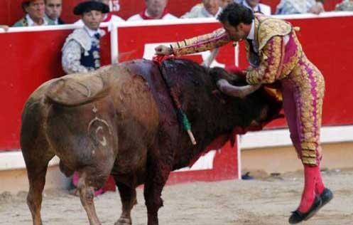 Ferrera en Pamplona. (FOTO:Emilio Méndez/Burladero.com)