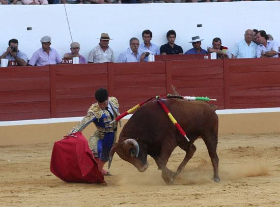 Tomás Campos iniciando la faena de muleta. (FOTO: Gallardo)