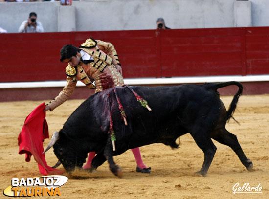 Buen pase y excelente tranco del toro al coger la muleta.