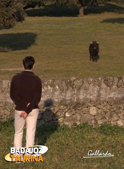 Mirando al toro y a su destino de frente. (FOTO:Gallardo)