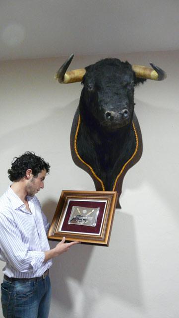 Mirando el trofeo de el Club Taurino de Badajoz junto al novillo de su debut con caballos. (FOTO:Gª de Elexalde)