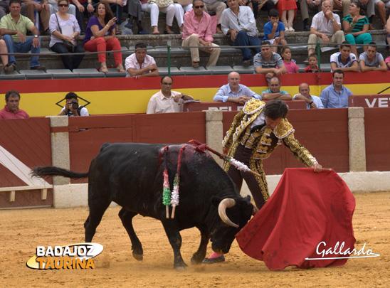 Javier Solis muleteando a su primero. (FOTO: Gallardo)
