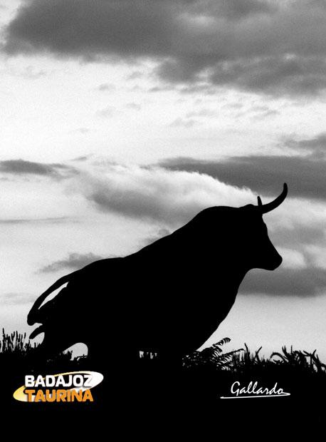 Con el toro nunca podrán los negros nubarrones que se ciernen sobre su cabeza.