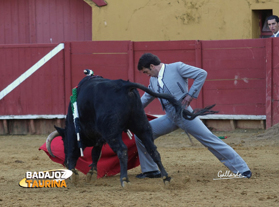 Jesús Márquez doblándose con su novillo. (FOTO:Gallardo)