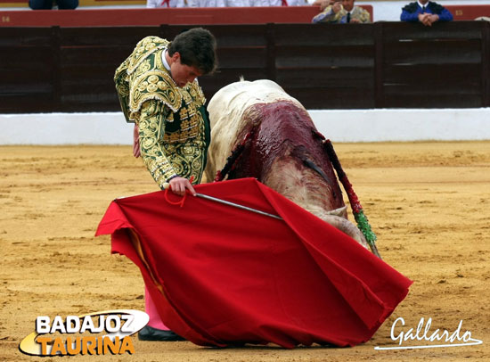 Muy encajado el día de su debut con caballos en Olivenza. (FOTO:Gallardo)