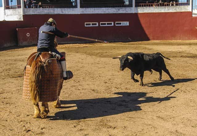 Novillo arrancándose al caballo que monta Dionisio Grilo.