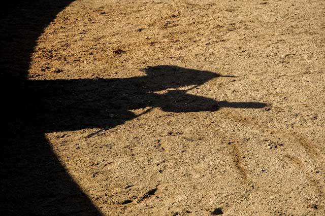 La marca de toda tienta: caballo, hombre y vara.