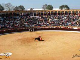 Plaza de toros de Olivenza. (FOTO: Gallardo).