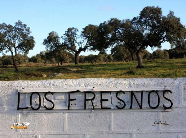 La finca 'Los Fresnos' sirve de escenario para este reportaje.