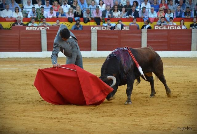 Miguel Ángel Perera