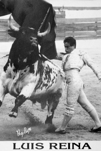 A pesar de su corte artista le tocó pechar con toros duros