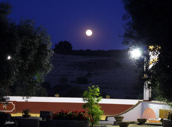 La noche cae sobre Doña Elvira, es hora de soñar con Sevilla...