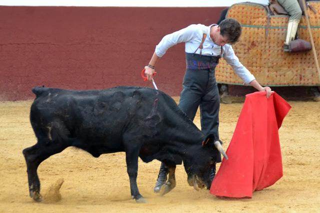 Tomás Angulo