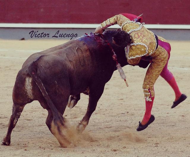 Momento de la cornada. Foto: Víctor Luengo