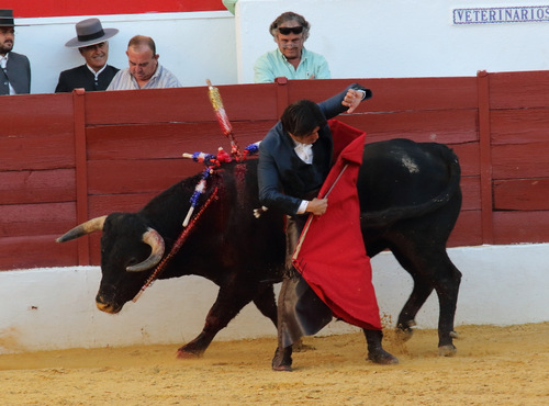 Desafortunada acción de Diego Ventura dando un molinete con el rejón de muerte clavado en el toro (FOTO:Gallardo)