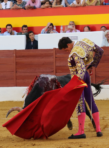 Miguel Ángel Silva