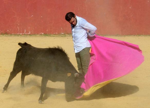 Antonio Ferrera tentando en la ganadería de Hnos. San Pedro (FOTO:Toromedia)
