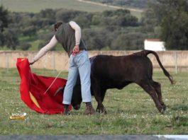 Román tentando en El Freixo resultó ser el torero misterioso en esta tercera semana de juego