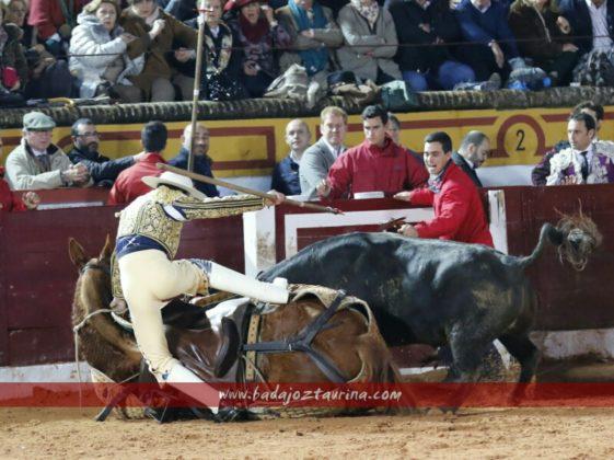 El monosabio salió a defender a su caballo