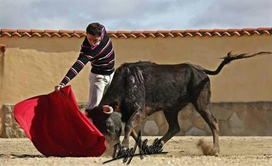 García Corbacho tentando en Victorino (FOTO: Diego Alcalde)