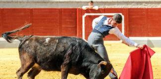 Antonio Pintiado tentando una vaca de Torrenueva en el Alfarero de Plata de Villaseca de la Sagra