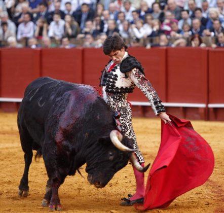 José Garrido en La Maestranza (FOTO: Toromedia)