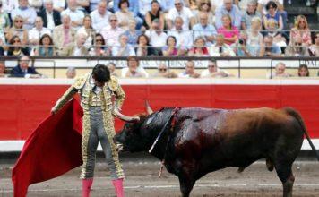 Perera en un momento de su actuación en Bilbao (FOTO: Arjona-Aplausos)