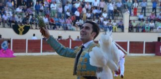 Fernando Flores
