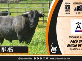 Toro de Victorino - Nº 45
