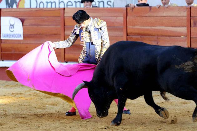 Paco Ureña (torodivisa.com)