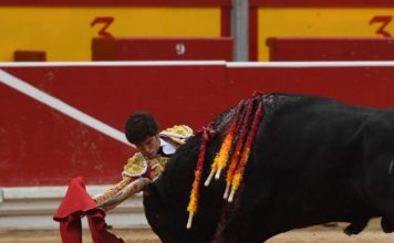 Garrido de rodillas ante el sexto en Pamplona (FOTO: Javier Arroyo)