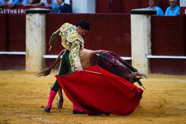 Garrido en Málaga (FOTO: Pablo Cobos)